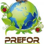 00-Logo-Prefor-Deff03-01