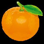 205-Orange
