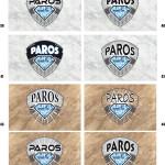 PAROS-version4