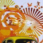 VW-TS-Cox-Plamplemousse-adulte-detail