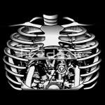 noir---Squellette-300x400